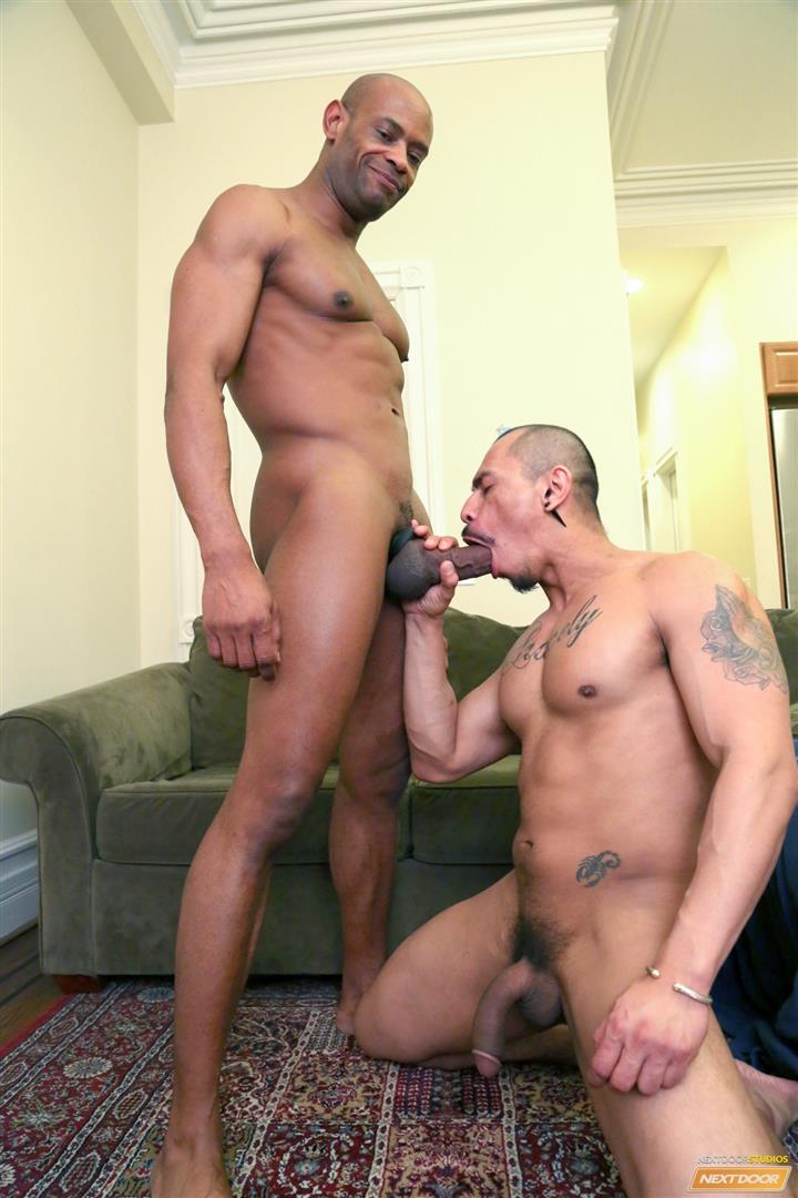 ebony fucks latin twink